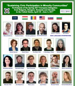 Spring Fellows 2017